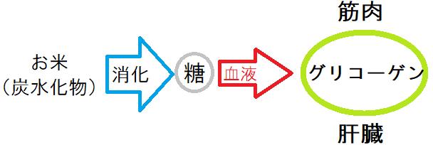 f:id:waterpolo_jpn:20190707142516p:plain