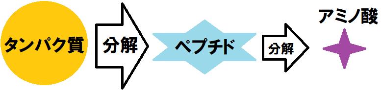 f:id:waterpolo_jpn:20190711223445p:plain