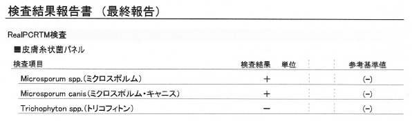f:id:wayarin:20210506003233j:plain