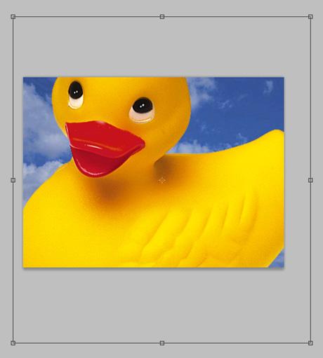 f:id:web-css-design:20111010164441j:image