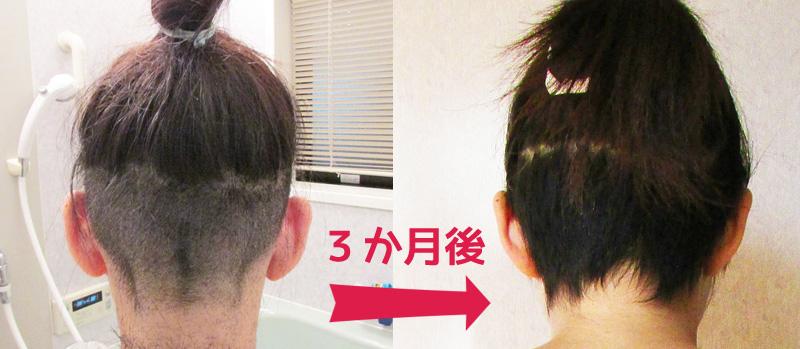 f:id:web-minako:20161025062222j:plain