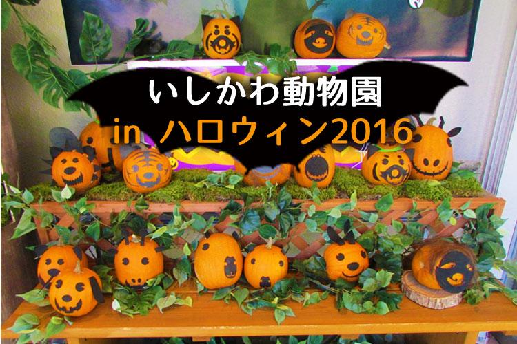 f:id:web-minako:20161104044942j:plain