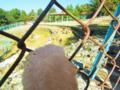 石川県森林動物園 しかせんべい