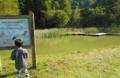 水棲昆虫園 石川県森林公園