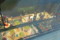 木育キャラバン 21世紀美術館