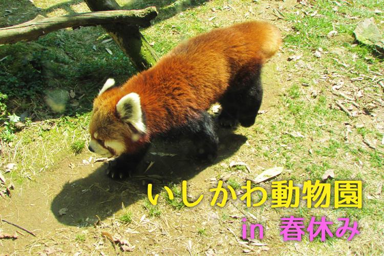 f:id:web-minako:20170401081455j:plain