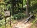 森林公園アスレチック