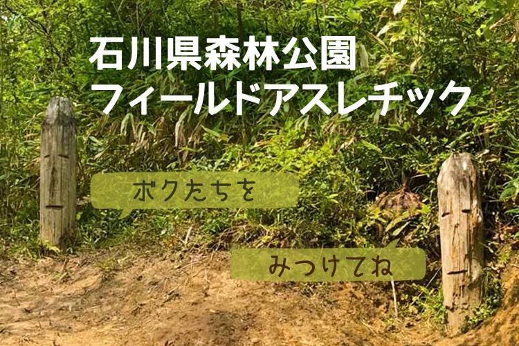 f:id:web-minako:20170504115309j:plain