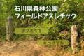 石川県森林公園フィールドアスレチック
