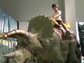 恐竜ランド 小松