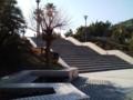 散歩、湘南海岸公園