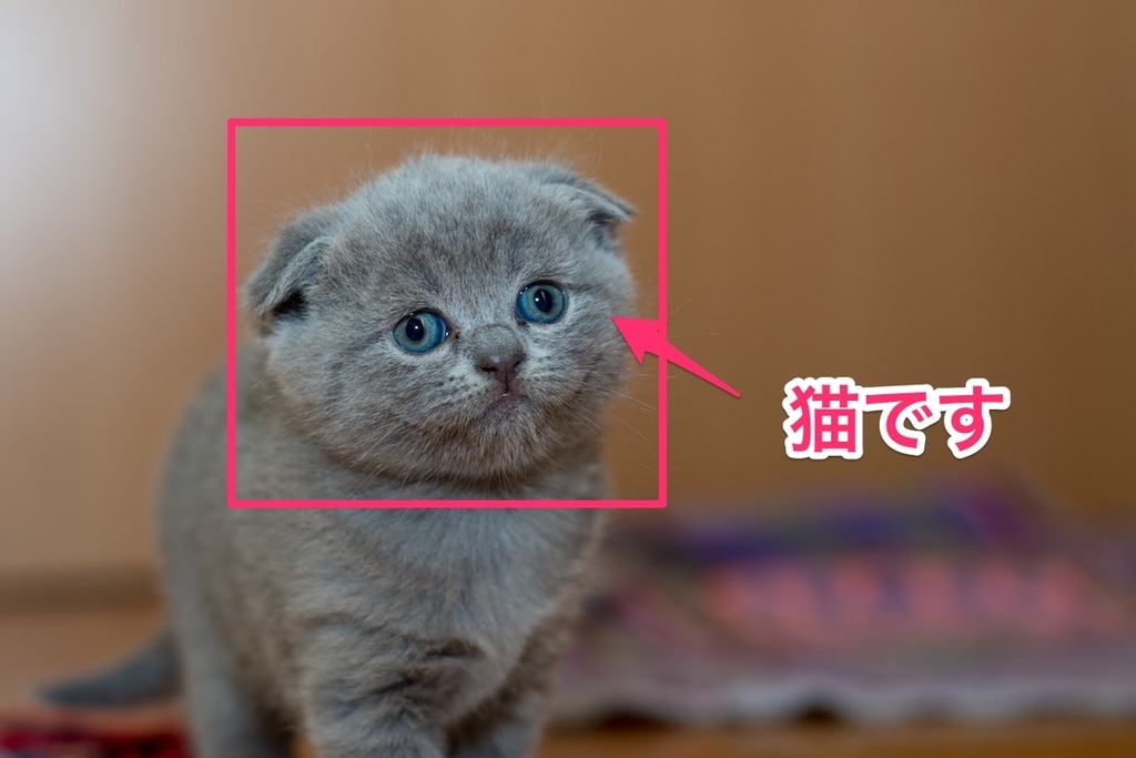 画像に補足説明などをつけたりできるSkitch