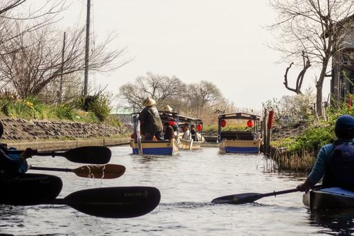 水郷めぐりの船とカヤックのパドル