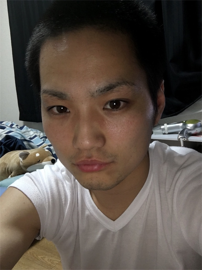 f:id:whatdoyouwant-kanata:20170809220527j:image