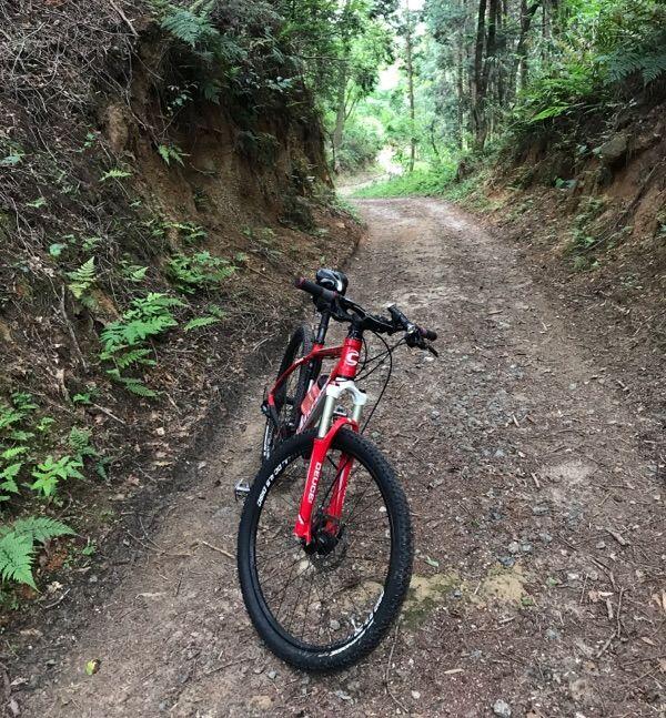 f:id:whitecollarcyclist:20180507142459j:plain