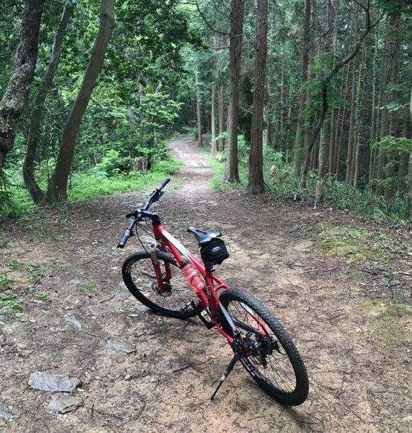 f:id:whitecollarcyclist:20180507145011j:plain