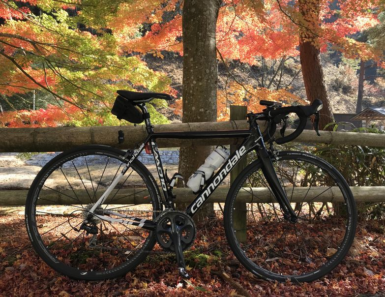 f:id:whitecollarcyclist:20181112181935j:plain