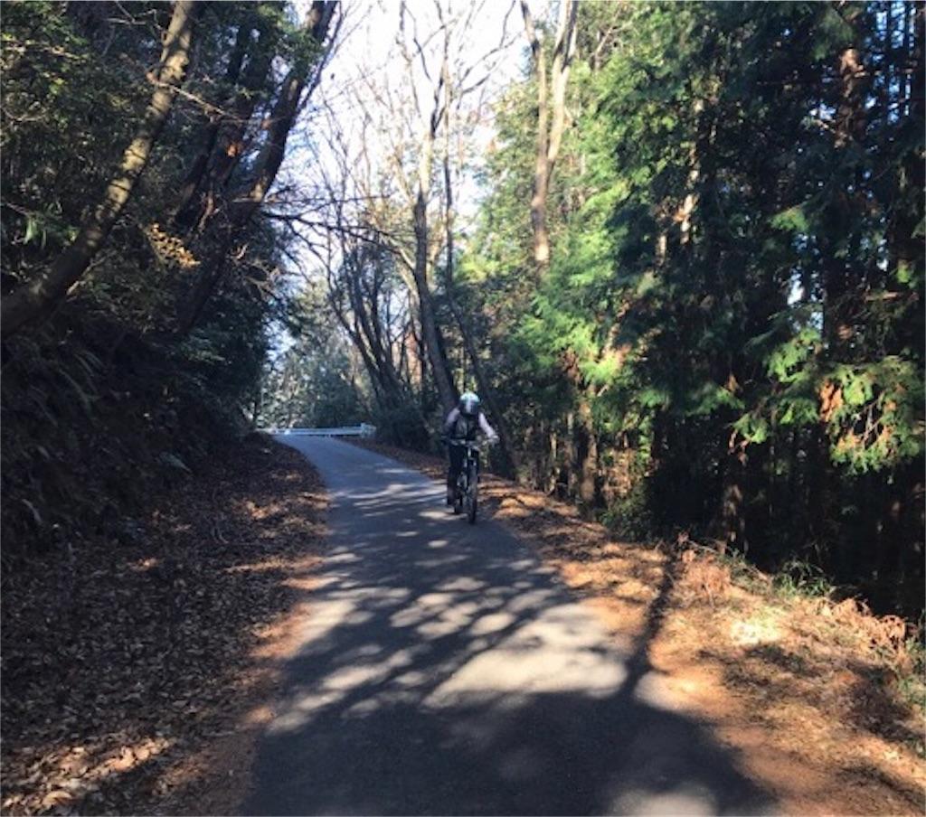 f:id:whitecollarcyclist:20190116022843j:image