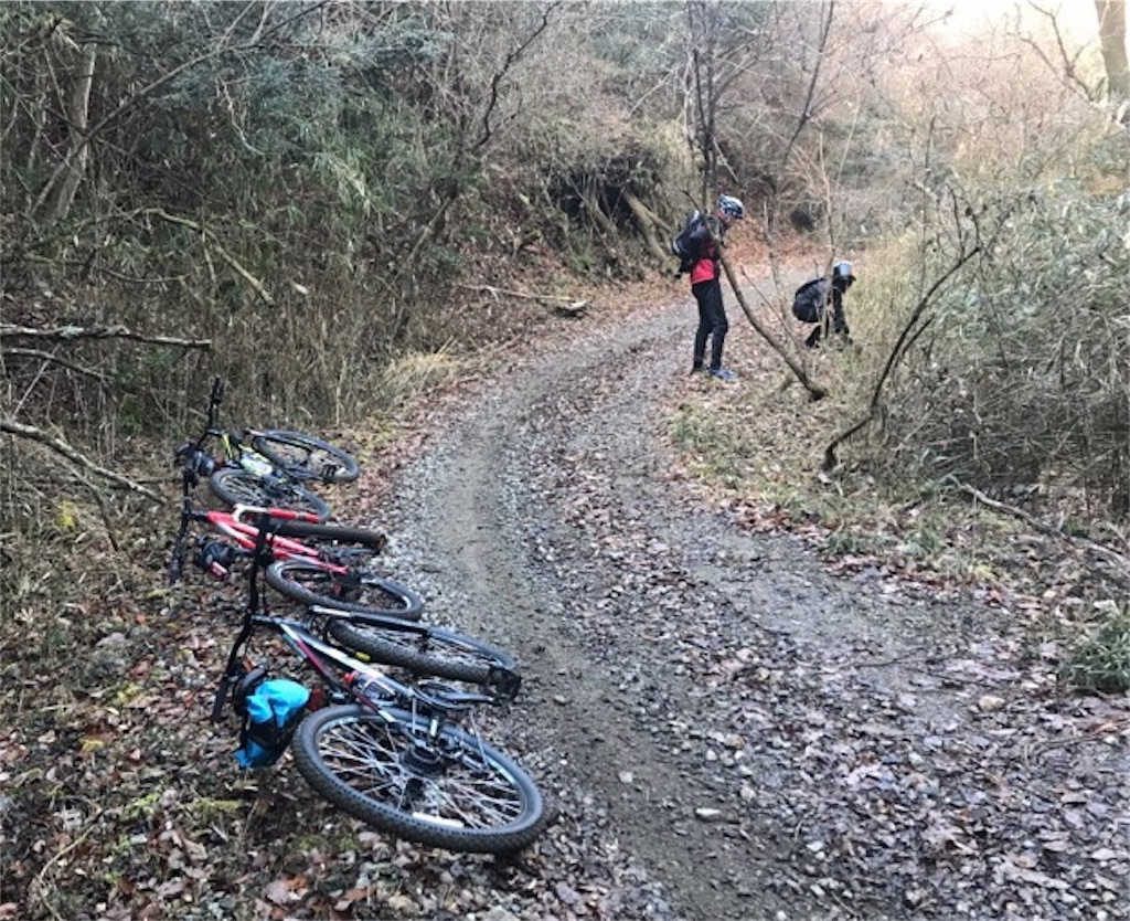 f:id:whitecollarcyclist:20190116023348j:image