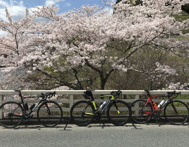 f:id:whitecollarcyclist:20200410161733j:plain