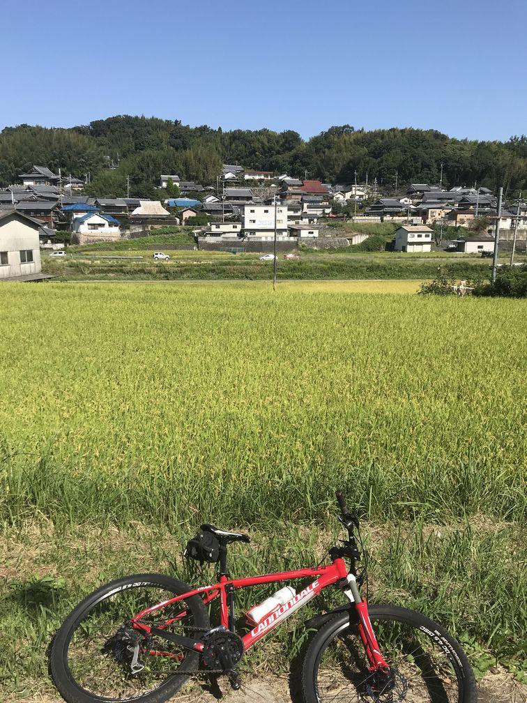 f:id:whitecollarcyclist:20211004112548j:plain