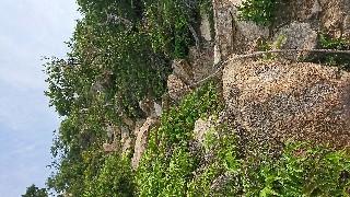 f:id:wide-tree:20170718080953j:image