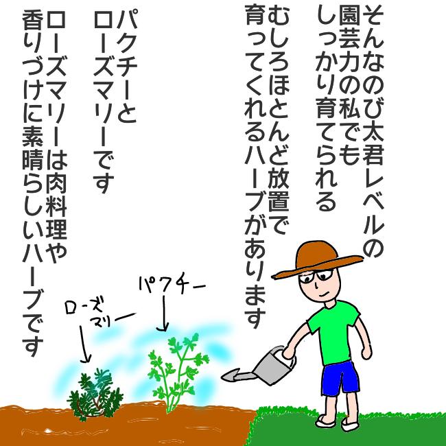 f:id:wide-tree:20210515222812p:plain