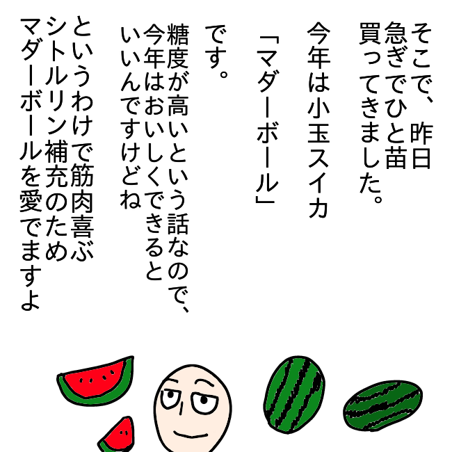 f:id:wide-tree:20210620230434p:plain