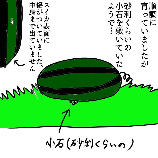 f:id:wide-tree:20210822211938p:plain