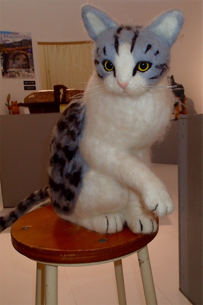 f:id:wild_cat:20160820142925j:image
