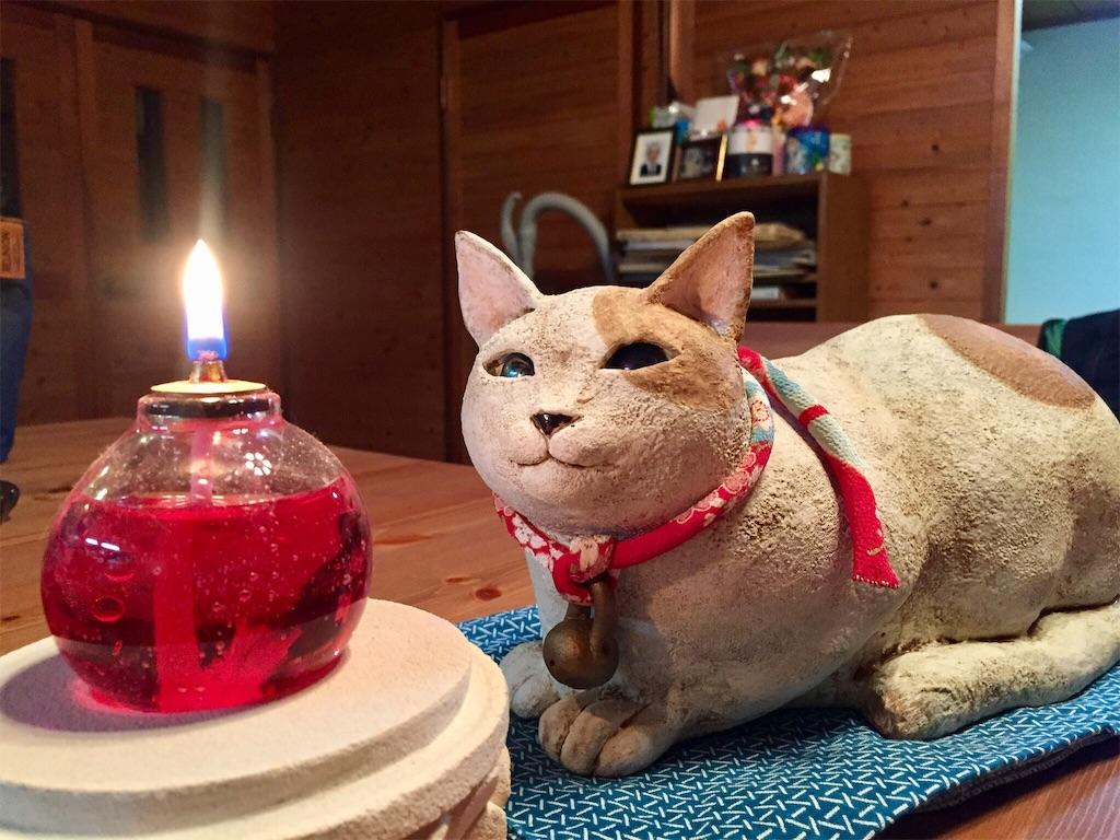 f:id:wild_cat:20161024133338j:image