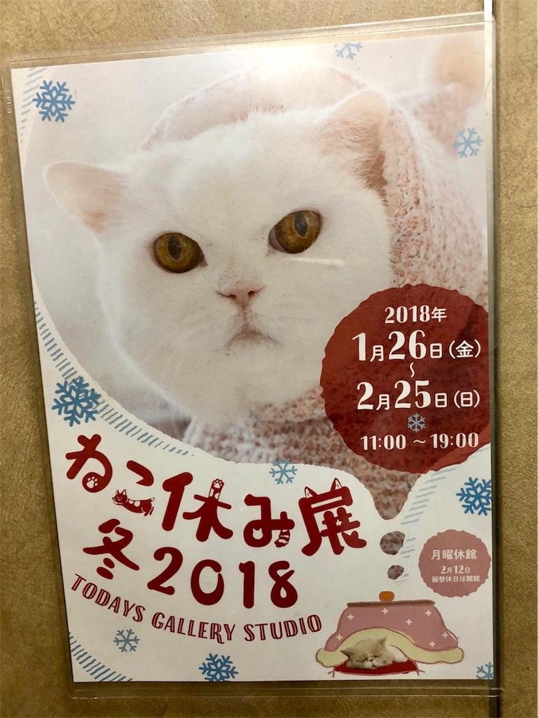 f:id:wild_cat:20180129180748j:image