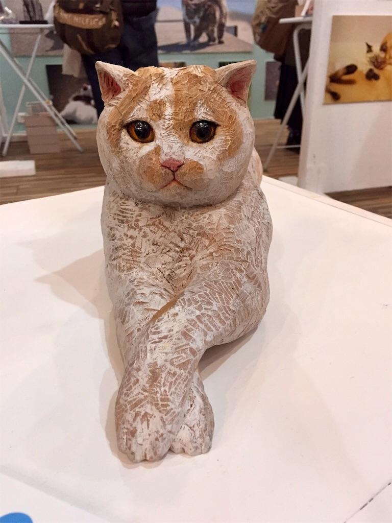 f:id:wild_cat:20180129181552j:image