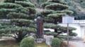 佛光寺本廟 三条小鍛冶宗近之古跡
