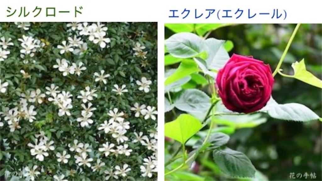 f:id:wind-waltz912:20210313232534j:image