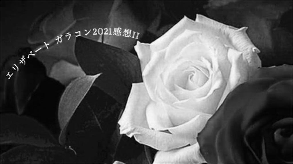 f:id:wind-waltz912:20210519140245j:image