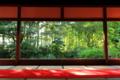 京都新聞写真コンテスト 巨大スクリーン