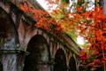 京都新聞写真コンテスト 先人も愛した風景