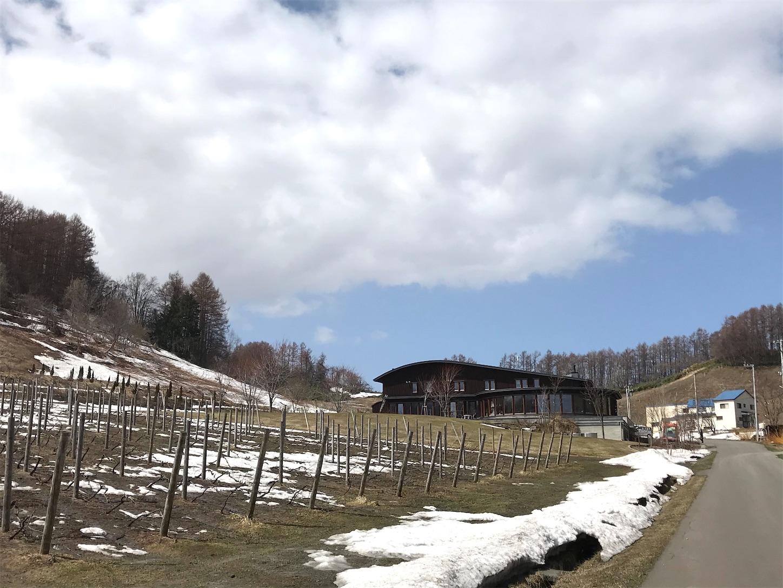 f:id:winelovers2050:20210331203139j:image