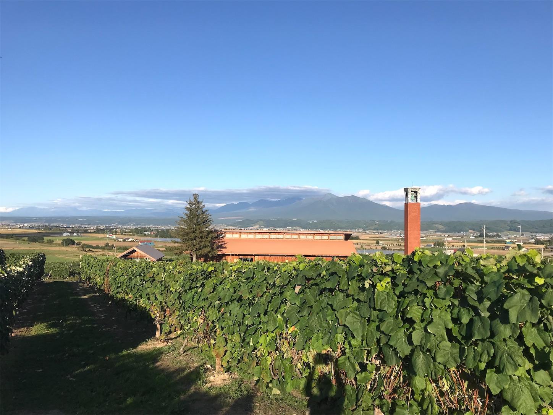 f:id:winelovers2050:20210915215537j:image