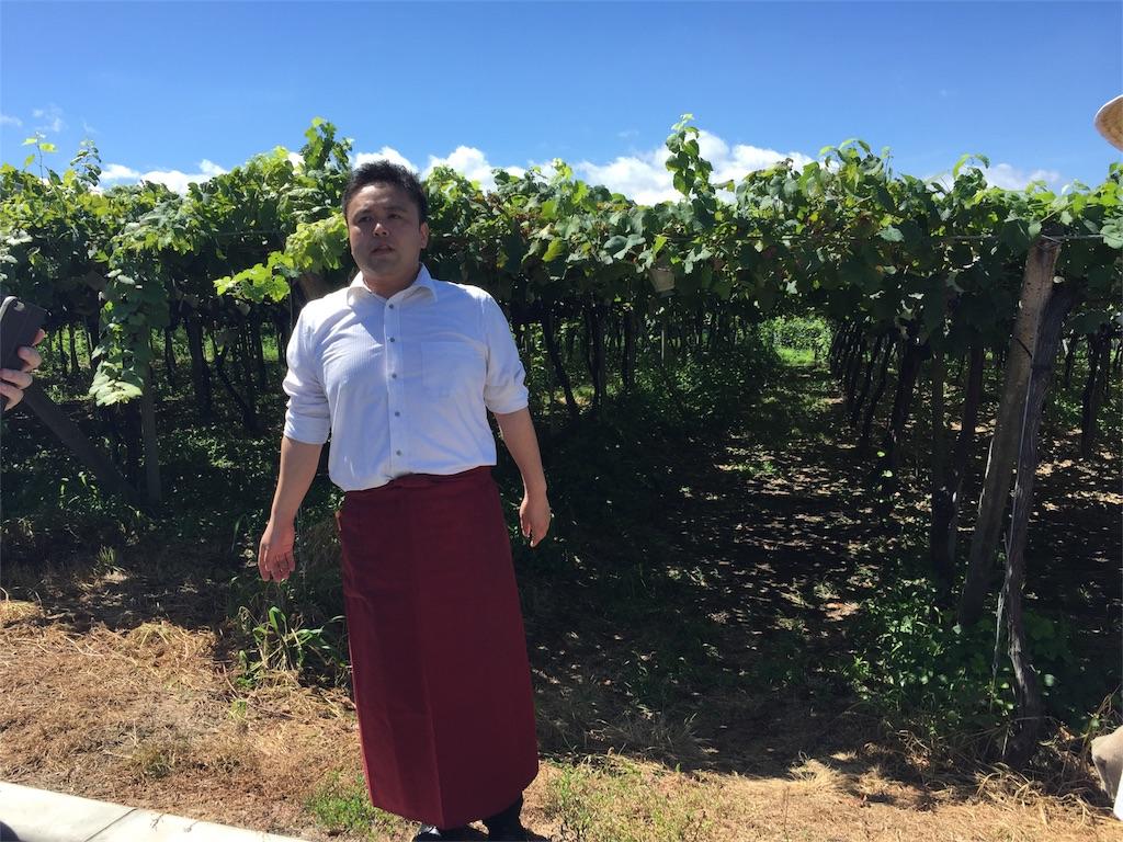 f:id:winemine:20180826124740j:image