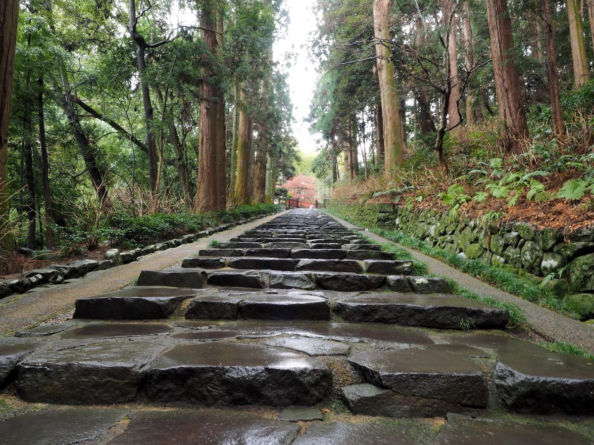 雨に濡れる石畳のフリー画像(写真)