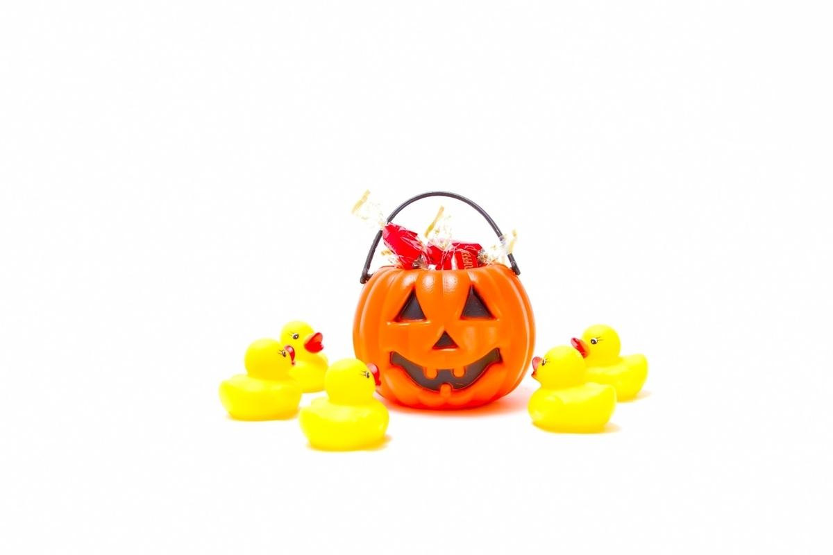 かぼちゃのおばけを召喚するあひるちゃんのフリー素材(写真)
