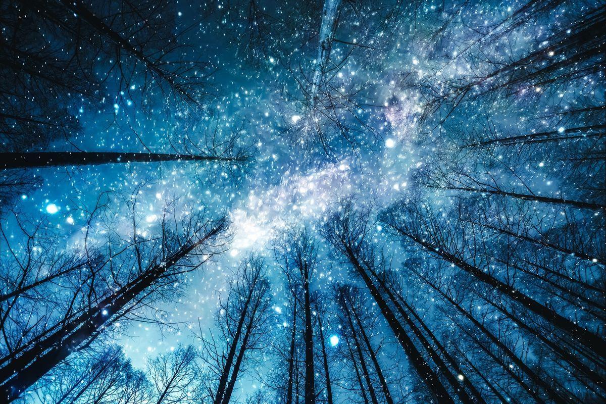 星降る夜(フォトモンタージュ)の写真素材