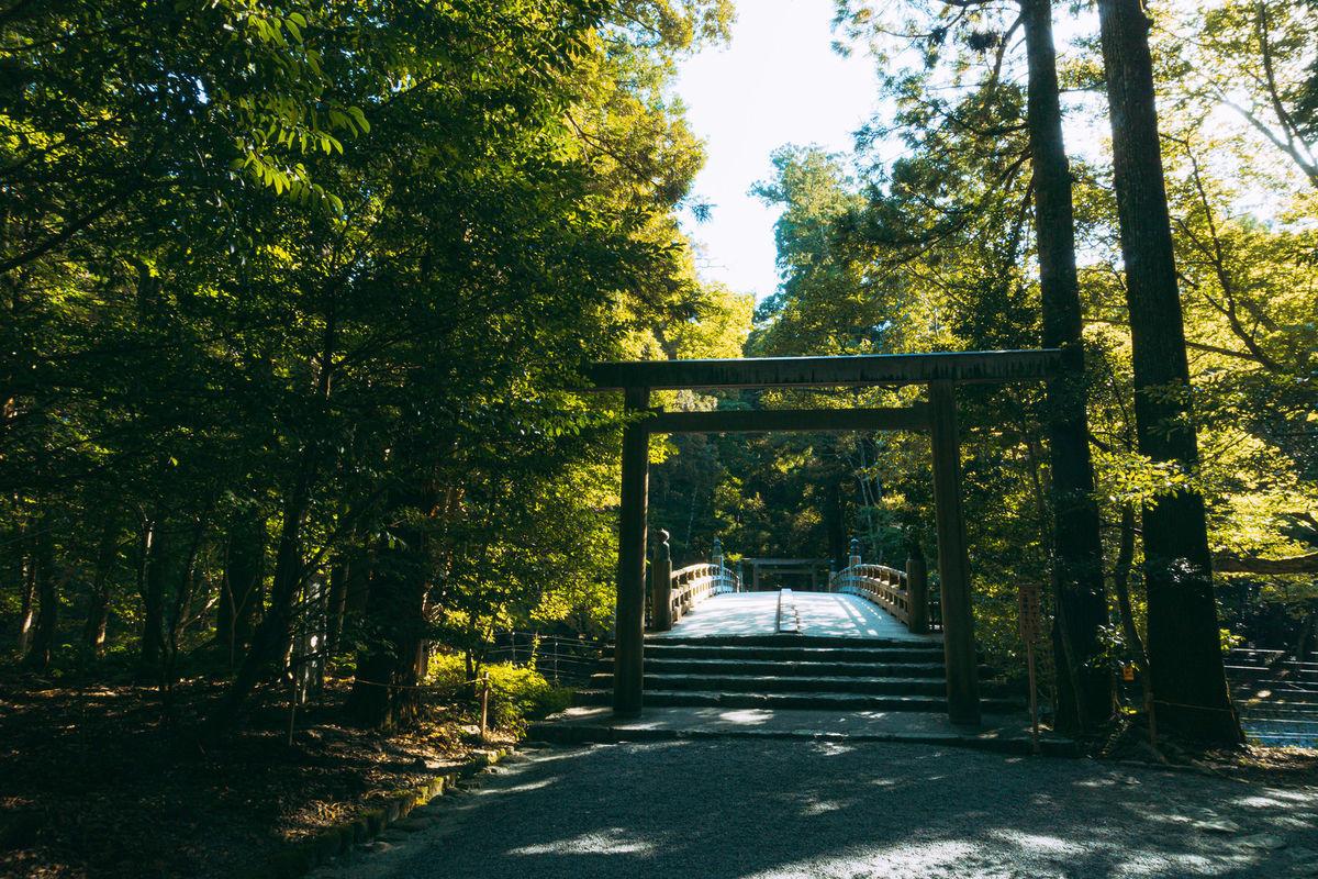 木々に囲まれた鳥居の向うに見える風日祈宮橋(かざひのみのみやばし)の写真素材