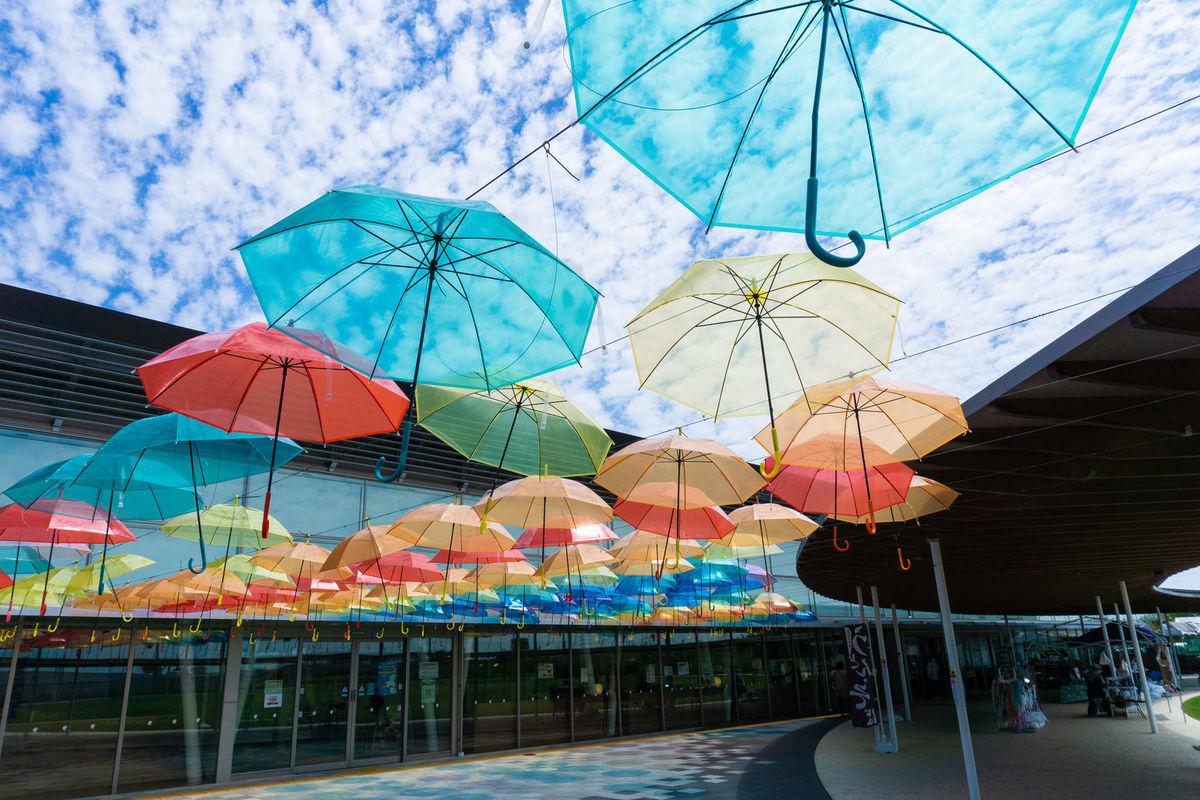 梅雨の晴れ間の綺麗な空を背に風に踊るアンブレラスカイの写真素材