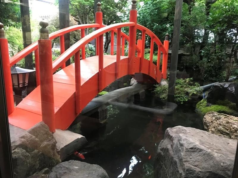 むつ市グランドホテルの池、鯉