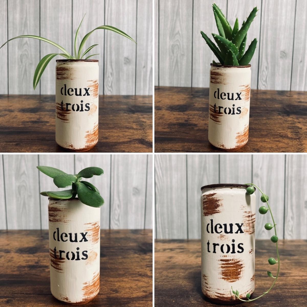 リメ缶&植物