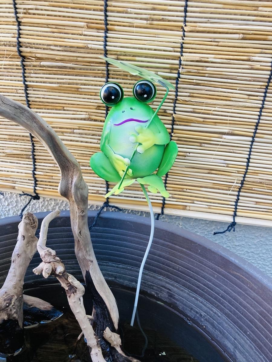 ダイソーのカエルのフィギュア