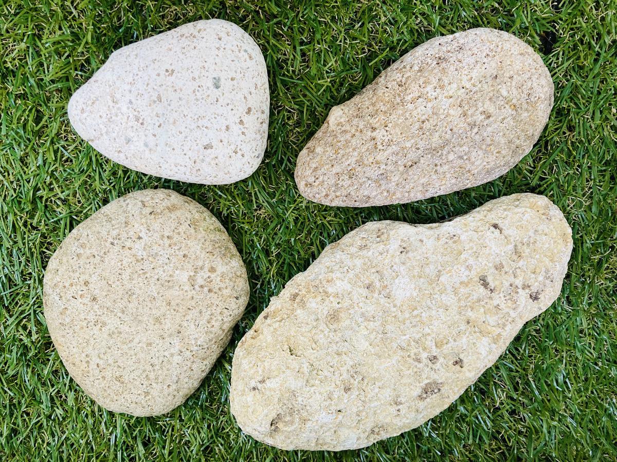 川で採取した軽石